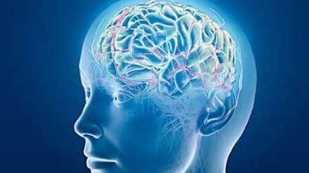 Hutimet e trurit, ja pse harrojmë çelësat e shtëpisë