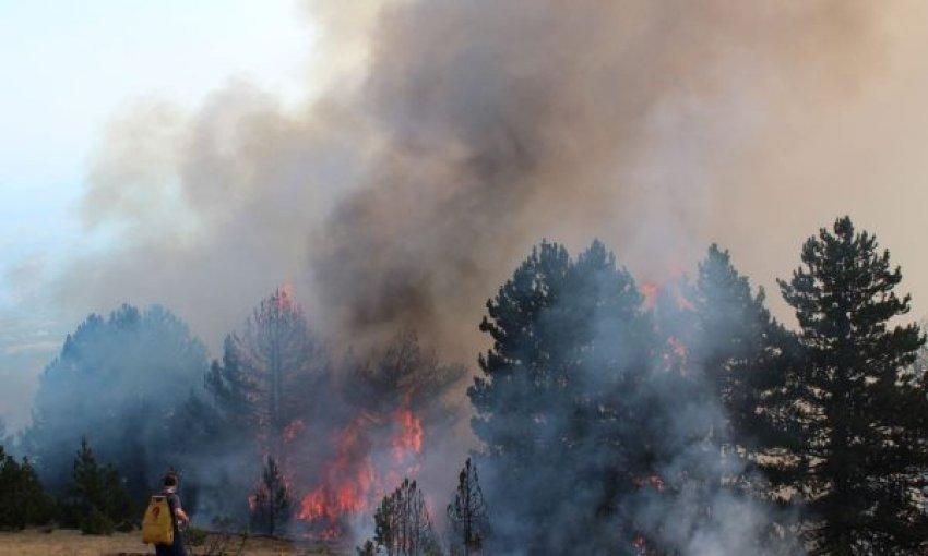 Ministria e Punëve të Brendshme bënë apel për kujdes nga zjarret