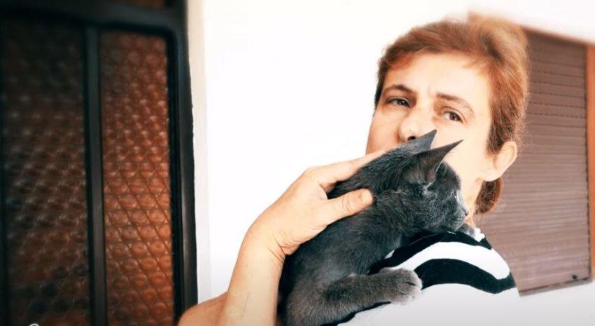 Njihuni me gruan nga Vushtrria që jeton me 30 mace në shtëpi