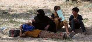 refugjatet-nga-ramadi-ne-situate-te-rende-humanitare